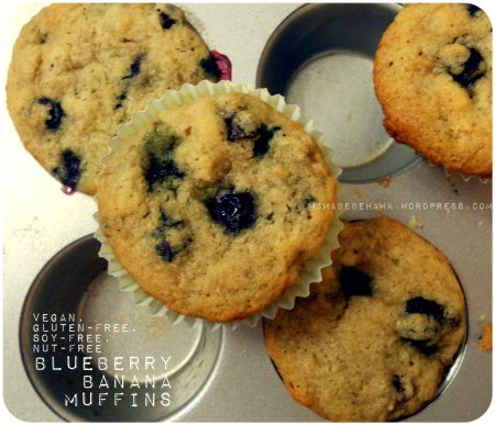 Allergy-free Blueberry Banana Muffins